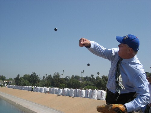 Tom Labonge pictching a shade ball into the Invanhoe reservoir.