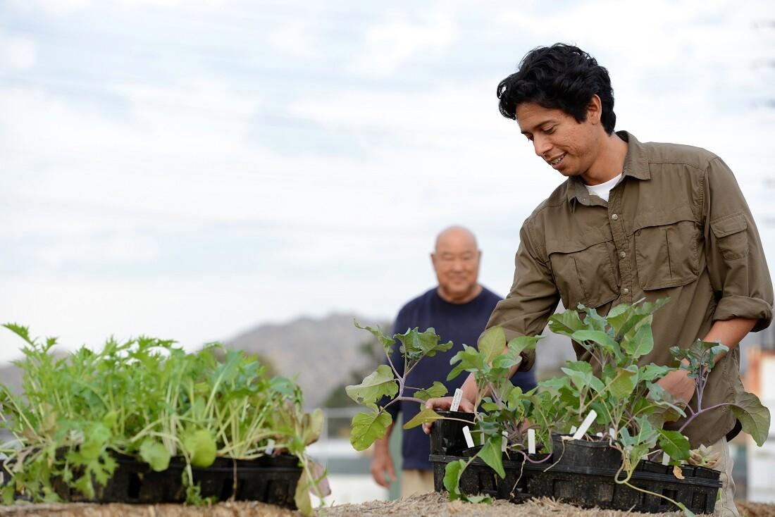 Fortino Morales III: UCR Community Garden