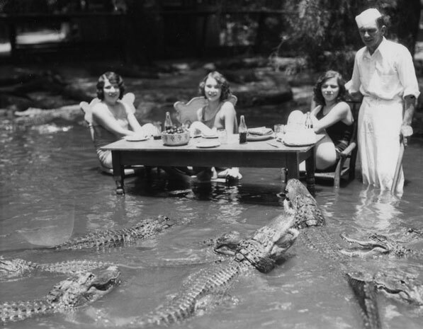 Women dine in a pond filled with alligators at the California Alligator Farm. Courtesy of the Los Angeles Public Library Photograph Collection.