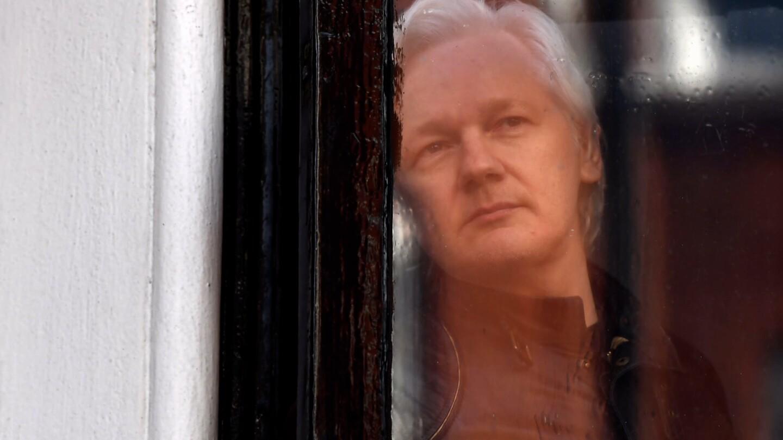 Julian Assange looks out a window.