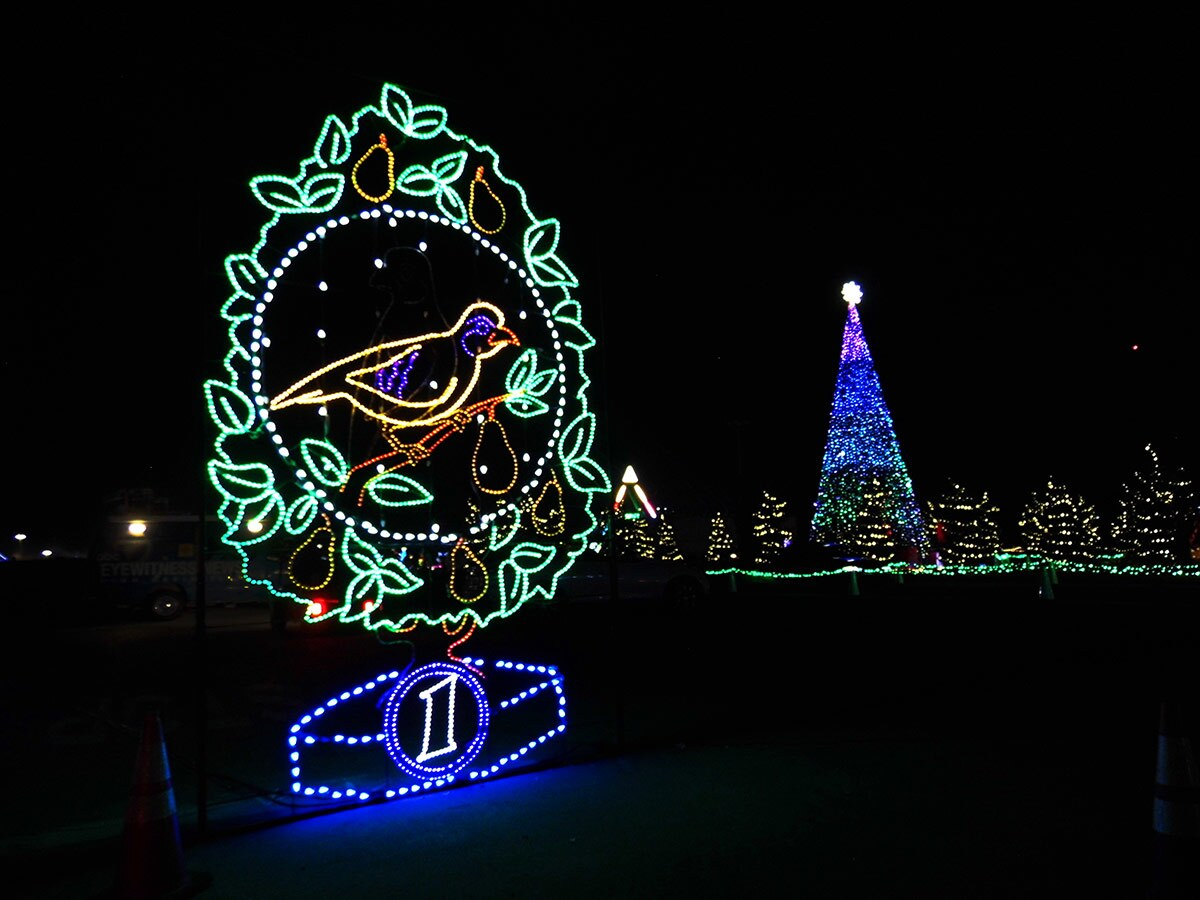 "Christmas lights in the shape of a partridge in a pear tree from the song ""12 Days of Christmas"" at Night of Lights OC at the OC Fair & Event Center. 
