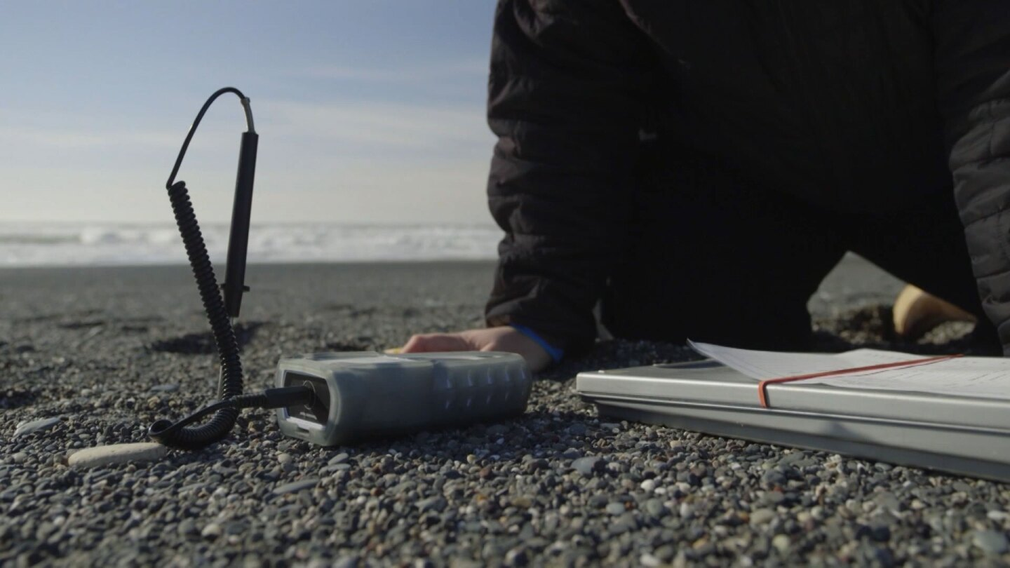 "Rosa Laucci, a tribal marine biologist, collects data to monitor for smelt presence on the beach. | Still from ""Tending Nature"""