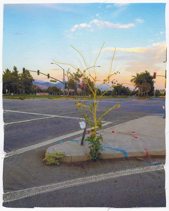 """Andrew K. Thompson, """"Weed,"""" 2014, Fabric Inkjet Print Accentuated with Thread, 10 x 8 inches"""