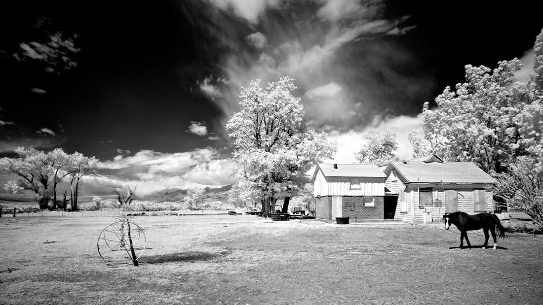 Boarded-UpFarm House with Watchful Horse - Infrared Exposure - Bishop, CA - 2016   Osceola Refetoff