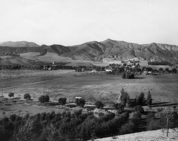 The view from Olive Hill in 1896, soon after the promontory was planted with olive trees. Courtesy of the Security Pacific National Bank Collection - Los Angeles Public Library.