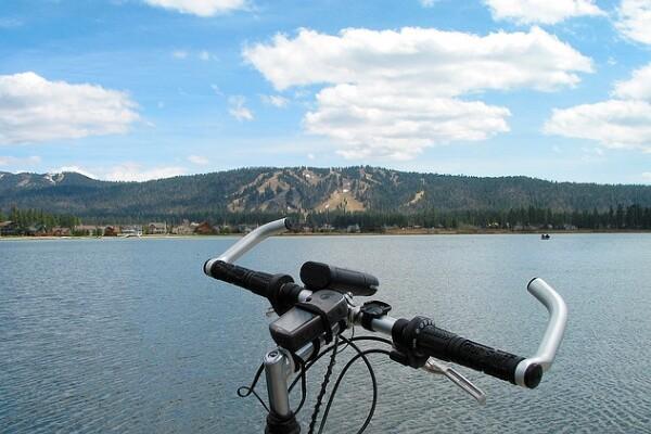 bikebear