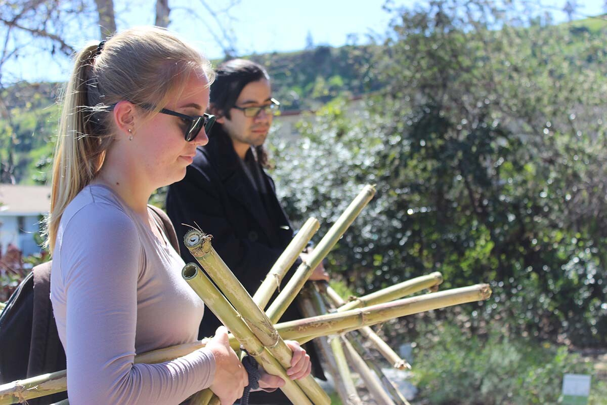CSUN students  Genevieve Hilburn and Stephen Crews gathering arundo | Spencer Robins