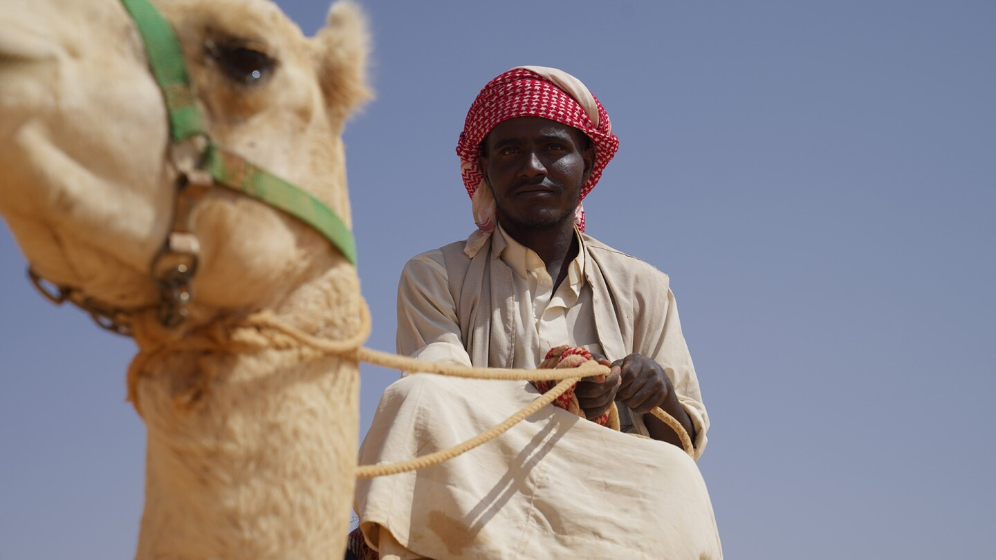 A man sitting on a camel looks down into the camera.