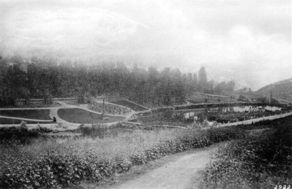 Second Street Park was nestled in the ravine of the Arroyo de los Reyes, as seen in this 1887 photo. Courtesy of the USC Libraries - California Historical Society Collection.