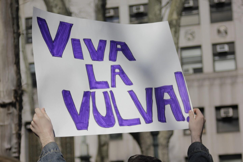 """Viva la Vulva"" sign at Planned Parenthood rally, NYC"