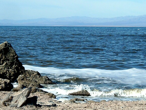 Shoreline of the Salton Sea at Obsidian Butte by Ruth Nolan.jpg