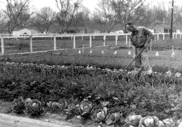 Small farm homesteader in El Monte, ca. 1936