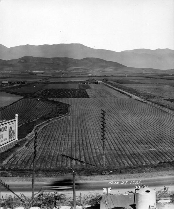 The agricultural fields of the future East Los Angeles in 1921. Courtesy of the Los Angeles Public Library Photograph Collection.