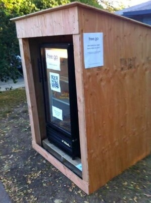 fridgedavis3-thumb-300x402-87200