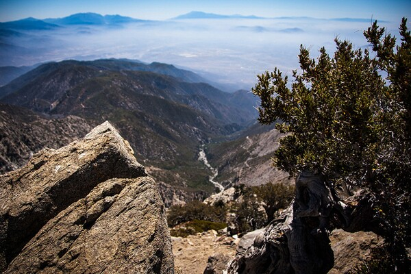 cucamonga_peak