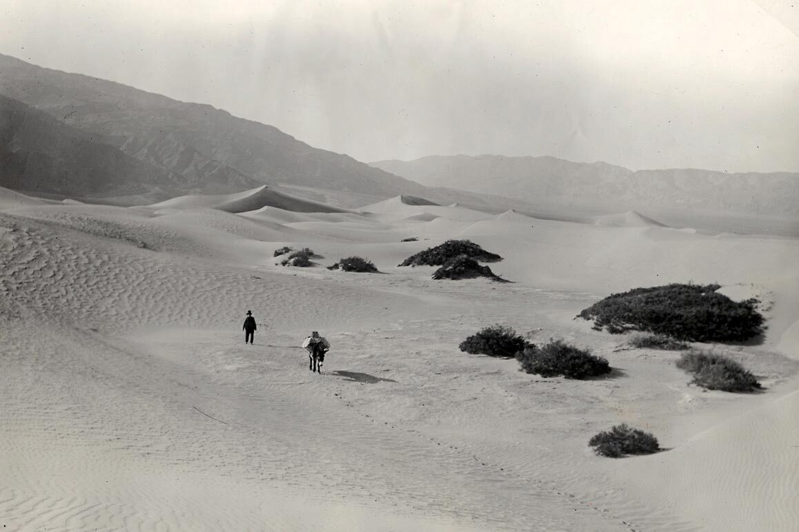 "Frank ""Shorty"" Harris plodding across Death Valley's sand dunes. 