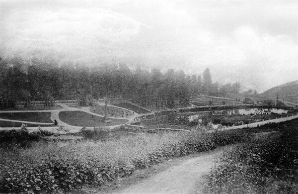Circa 1887 view of Second Street Park, which was home to a lakelet just south of Echo Park. The park was located in the canyon of the Arroyo de los Reyes. Courtesy of the Title Insurance and Trust / C.C. Pierce Photography Collection, USC Libraries.