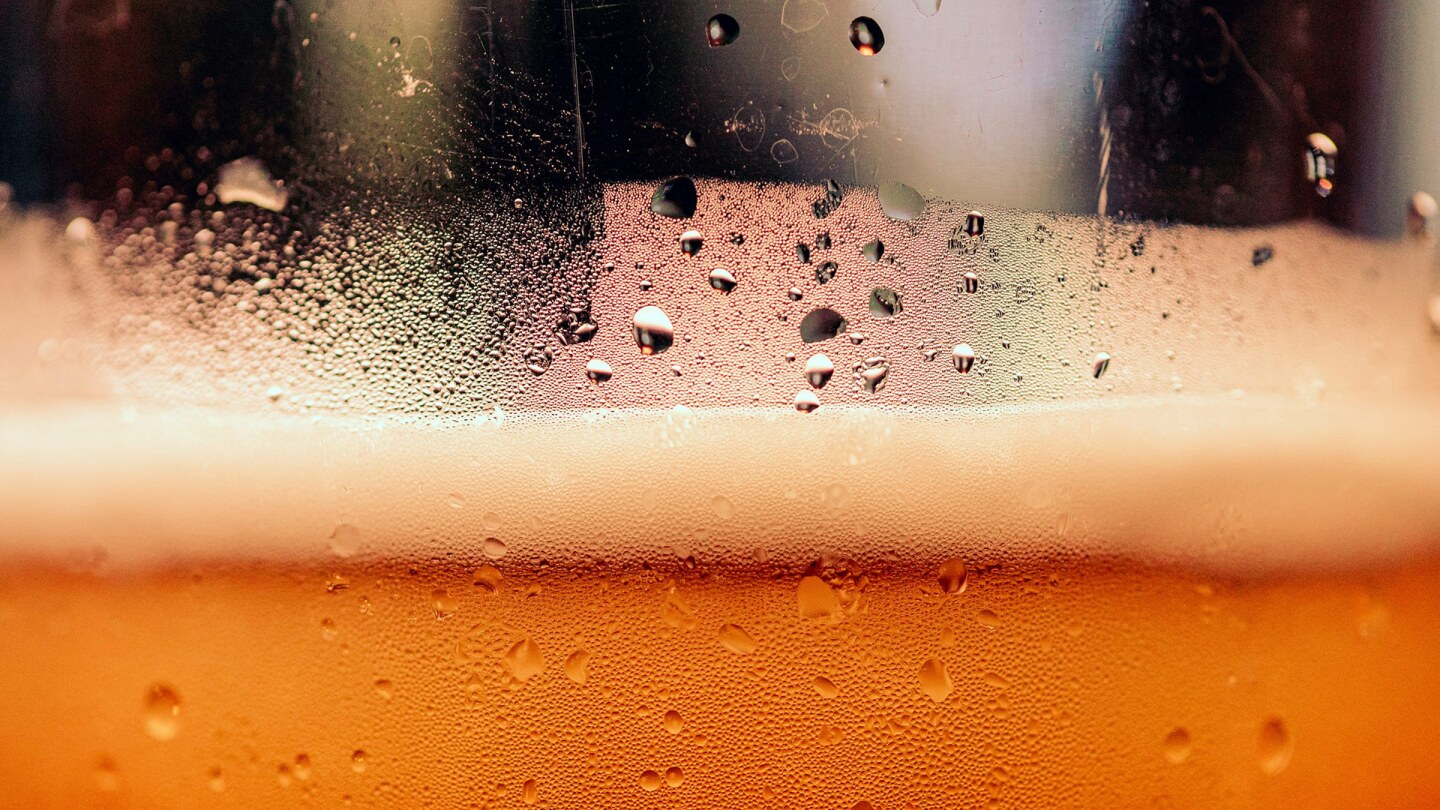 Beer froth   Timothy Dykes / Unsplash