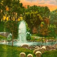 busch gardens postcard
