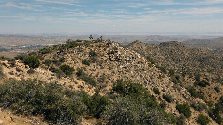 View From Warren Peak
