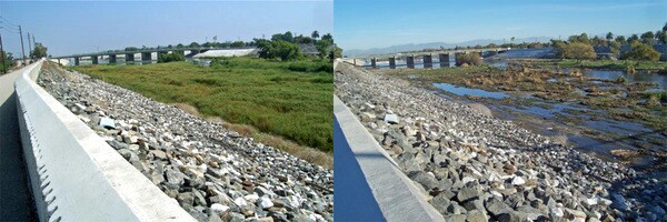 Before and after clearing of the L.A. River from Willow to PCH