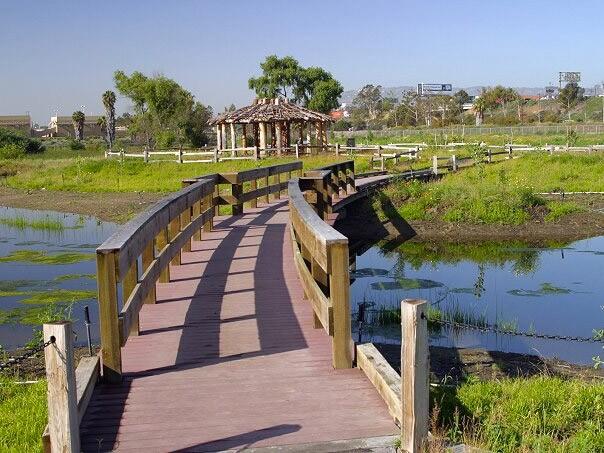 The Bixby Marshland in Carson features native wetland and coastal sage scrub plants.