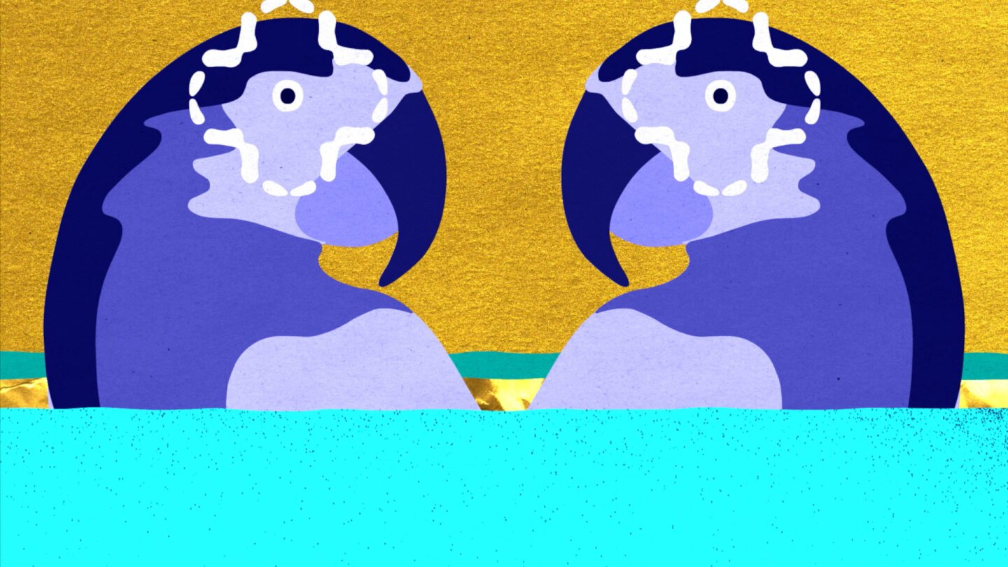 """Still from """"Populous:"""" Two illustrated purple parrots"""