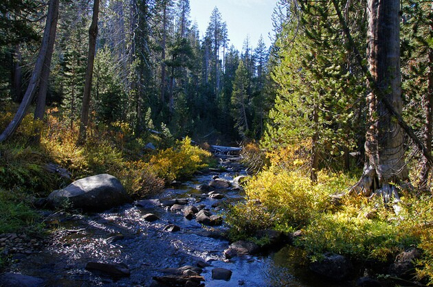 logging-sierra-water-1-20-16-thumb-630x418-100885