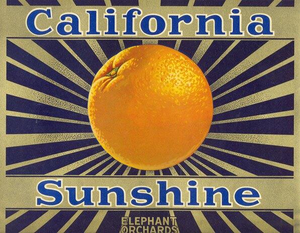 California Sunshine orange crate label. From the David Boulé Collection.