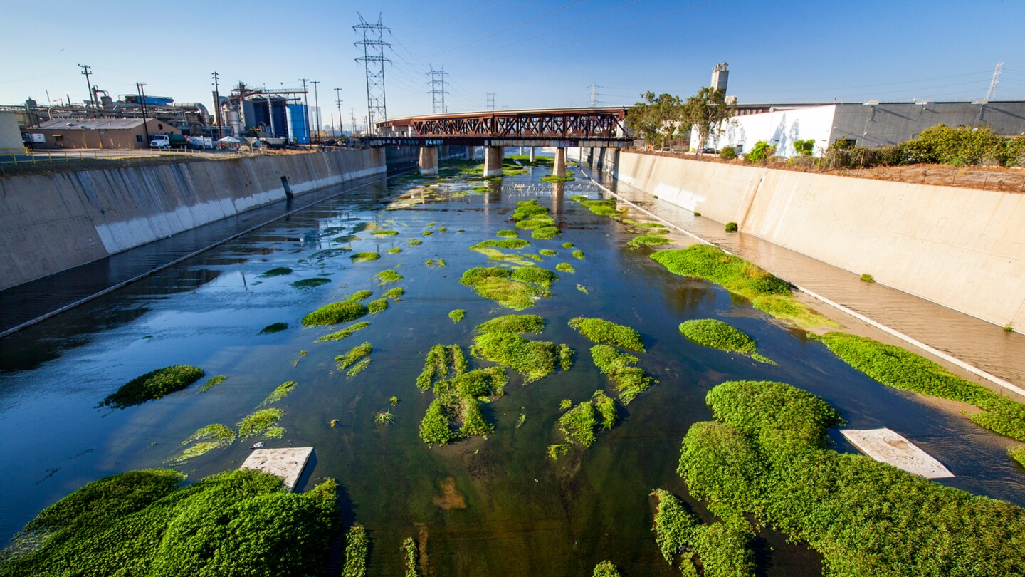 Los Angeles River | U.S. Fish and Wildlife Service