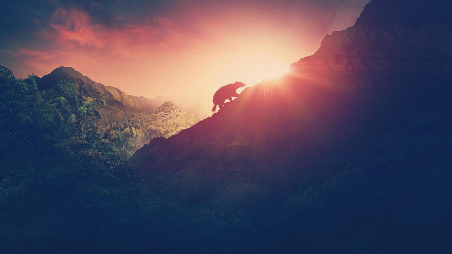 "The silhouette of an animal climbing the side of a mountain. | From ""NOVA: Rise of the Mammals"""