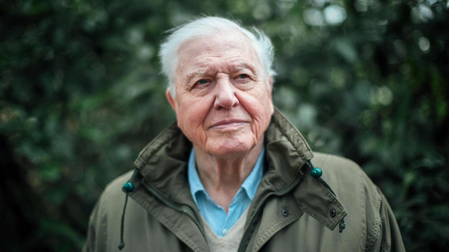 """Sir David Attenborough   """"Climate Change - The Facts"""""""