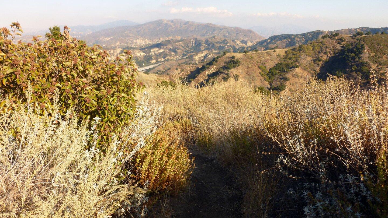 Towsley Canyon