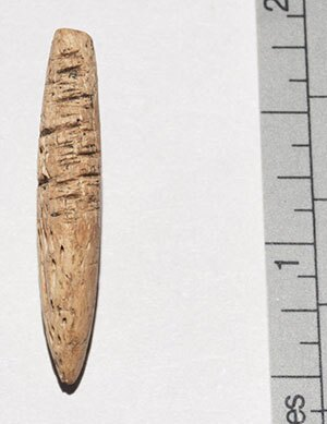 Chumash compound fish barb. The Chumash and their ancestors lived on the Northern Channel Islands for at least 12,000 years before their eviction in the 1820s. Photo courtesy of the UCLA Fowler Museum of Cultural History.
