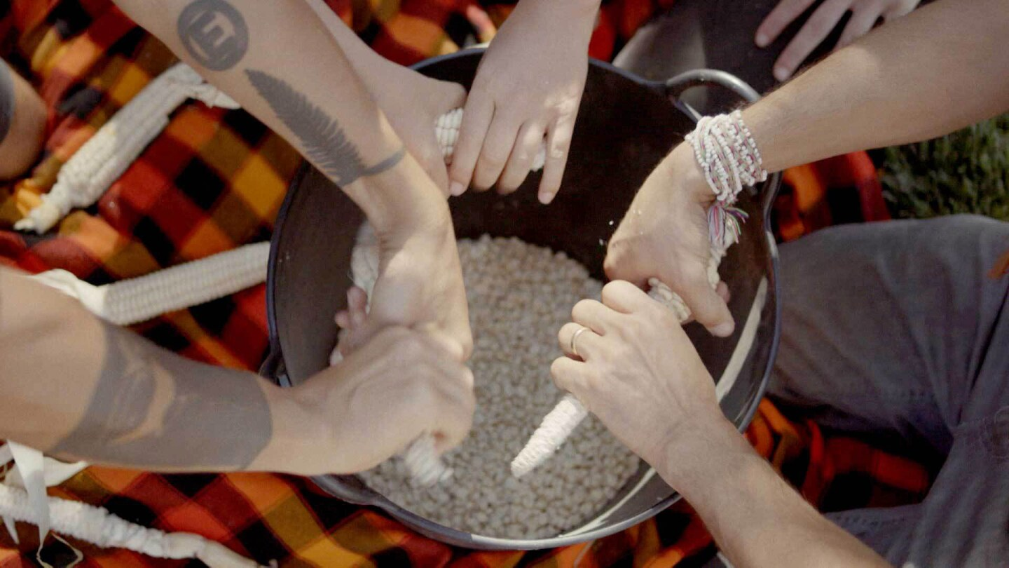 "A group at the Cultural Conservancy removes dried grain corn from the cob to preserve the seeds in their seed library. | Still from the ""Cultivating Native Foodways with the Cultural Conservancy"" episode of ""Tending Nature."""
