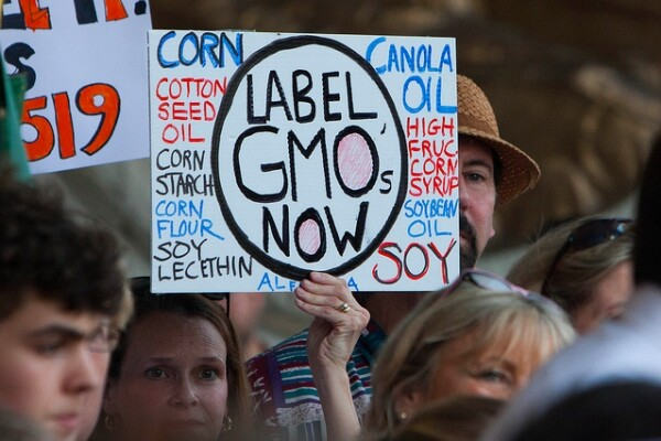 labelfight