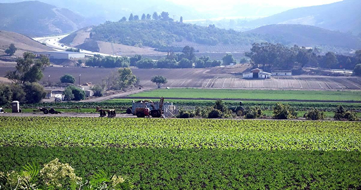 Simi Valley farming | Alexandra Bilham/Creative Commons