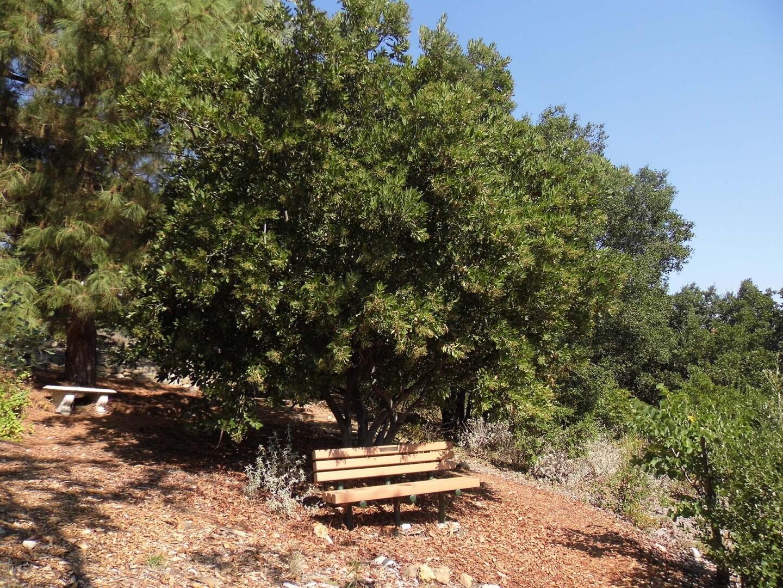 The Conejo Valley Botanic Garden nature trail   Sandi Hemmerlein