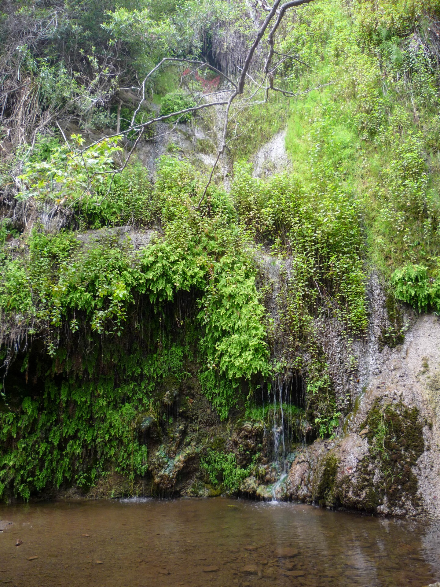 The waterfall at the end of the Escondido Canyon Park and Falls hike in Malibu.