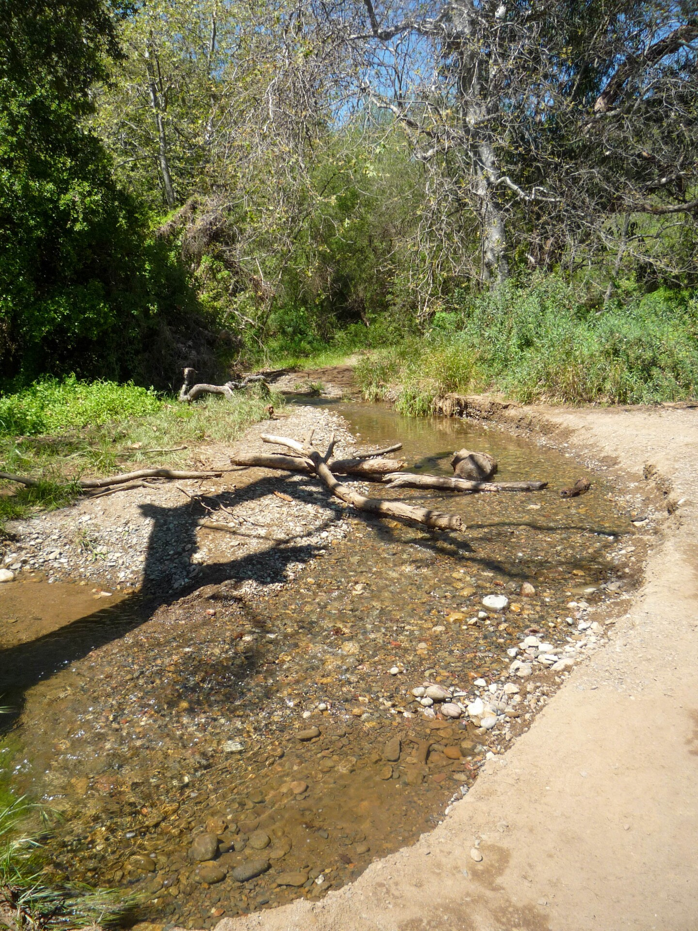 A trickling creek before along the trail before arriving at the Temescal waterfall.