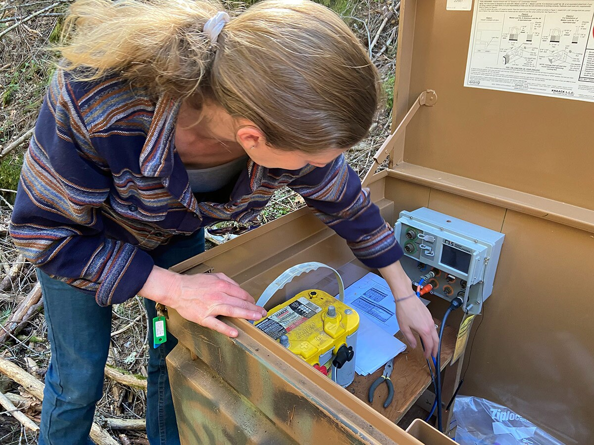Carrie Monohan, head scientist for the Sierra Fund, checks a gauge that monitors water quality in Malakoff Diggins State Historic Park. This gauge measures turbidity, which can be used as an approximation for mercury content. | Alexandria Herr
