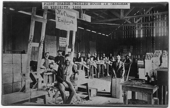 Building said to be Pasadena's first orange packing house. A sign reads, 'No Chinese Employed.' Many field workers were Chinese, but they were not welcome in the central city. Courtesy of the Archives, Pasadena Museum of History (A-16-2B).