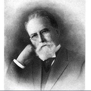 D.O. McCarthy