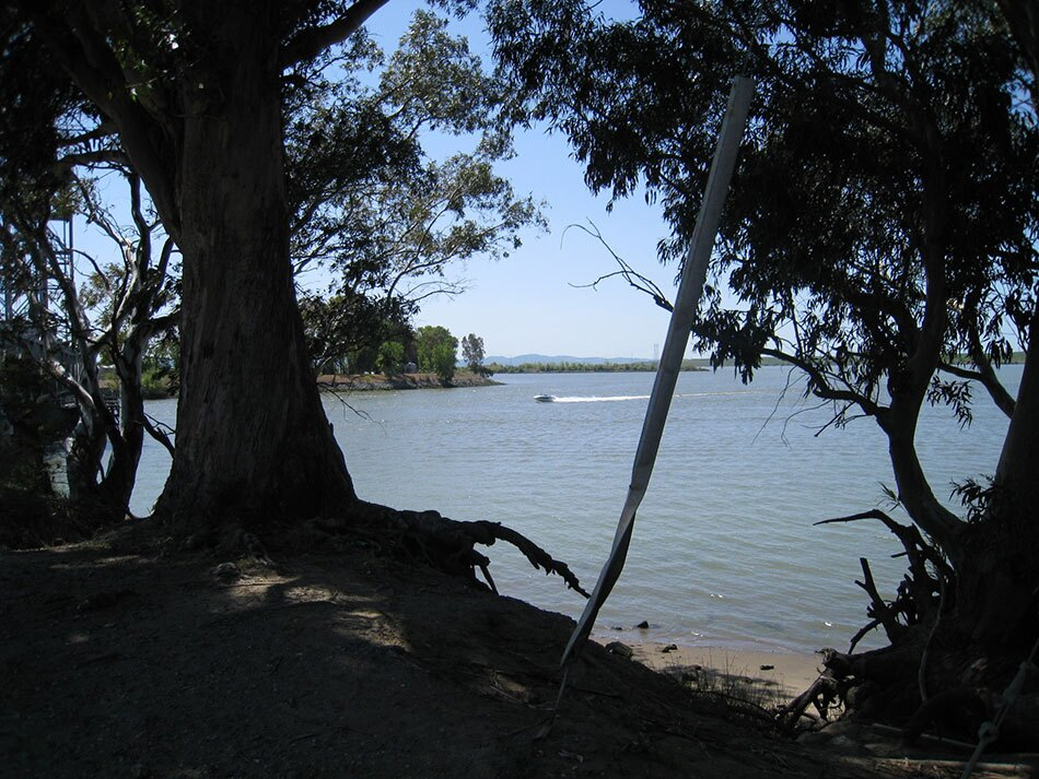 Waterway with Trees in Foreground and Power Boat in Distance