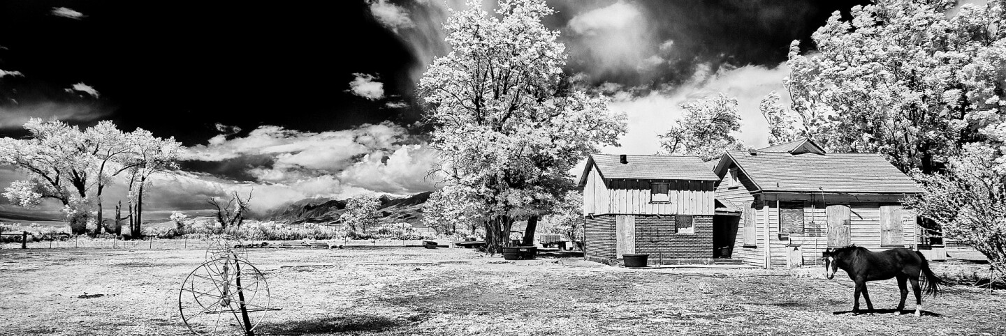 Boarded-Up Farmhouse with Watchful Horse - Infrared Exposure - Bishop, CA - 2016 | Osceola Refetoff