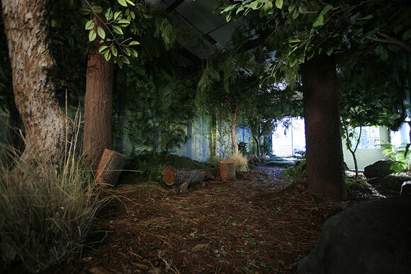 Forest installation by Sara Newey and Christy McCaffrey | Photo: Courtesy of Machine Project.
