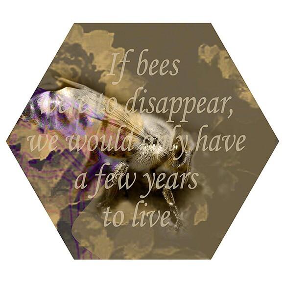 "Nancy Macko, ""Honey Teachings 04L,"" 2014, Archival digital image on panel, 11.5"" diameter."