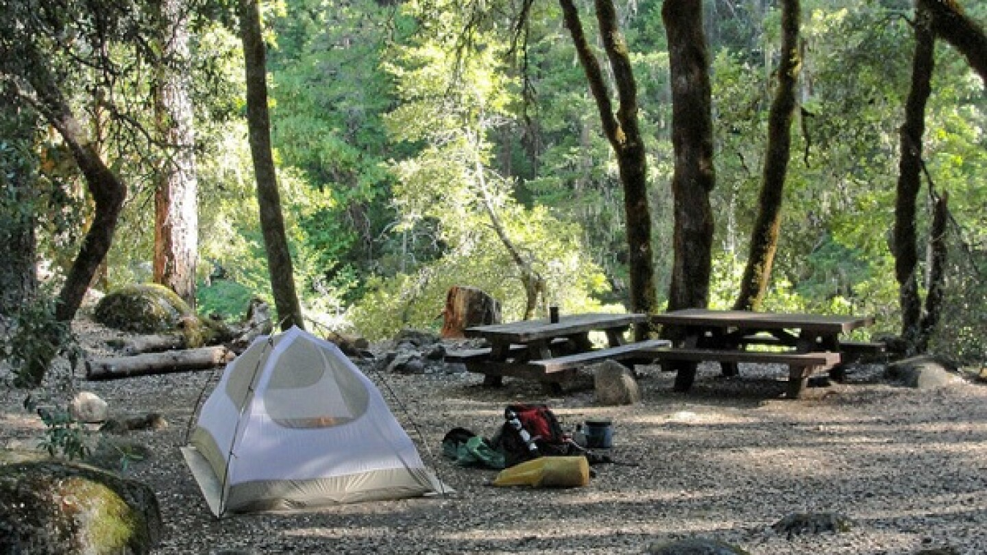 A campground in Shasta-Trinity National Forest.