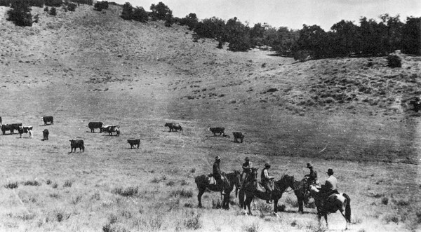 Cowboys on South Orange County ranch. Photo courtesy of the Orange County Archives.