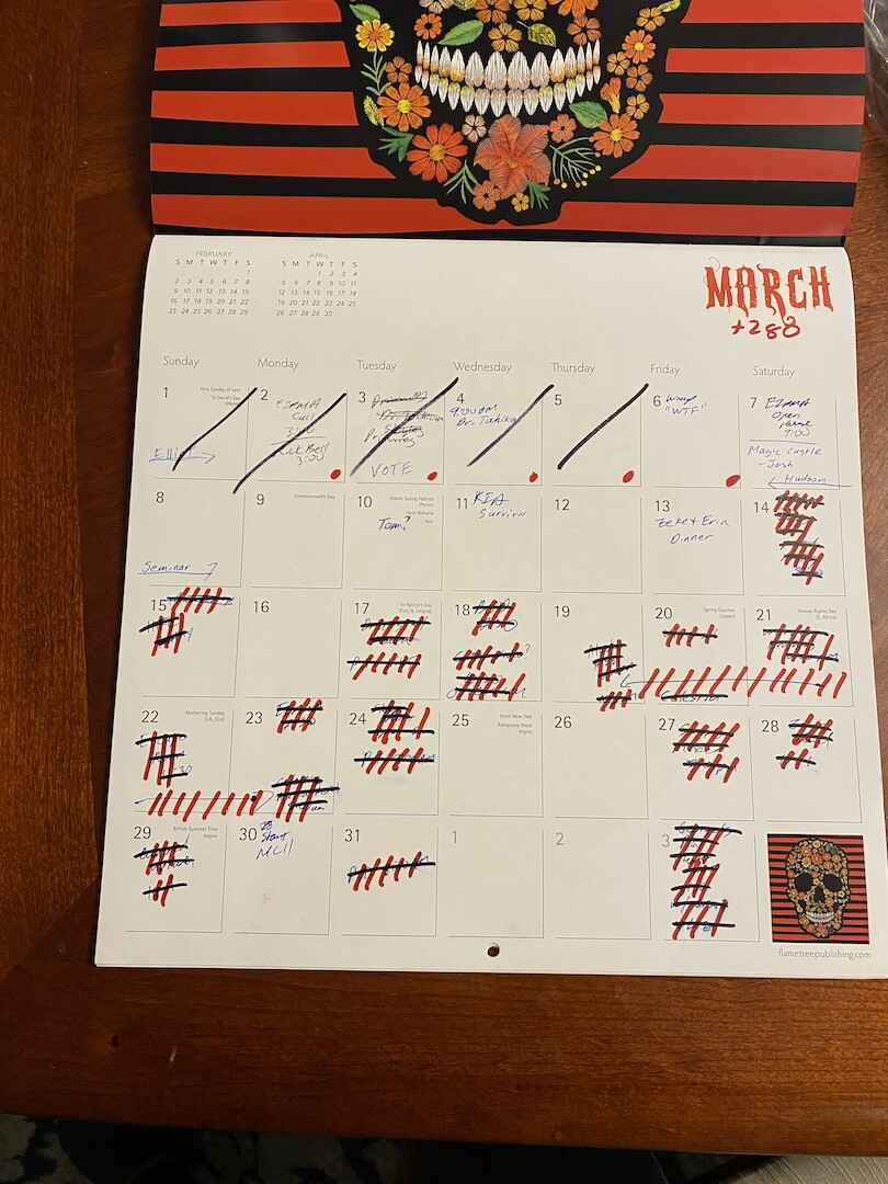 Calendar with cross outs in March 2020, due to COVID-19 pandemic